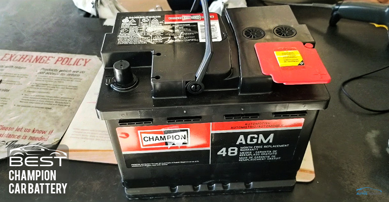 Champion Car Battery